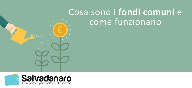 Cosa sono i fondi comuni